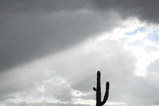 3101 South Morningside Lane #1B, Gold Canyon AZ