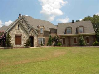 5300 Raleigh Lagrange Drive, Collierville TN