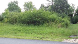 300 Wewoka Lane, Loudon TN