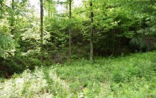 62 Kudzu Creek Trail, Murphy NC