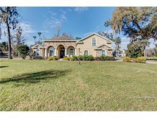 810 John Cressler Drive, Seffner FL