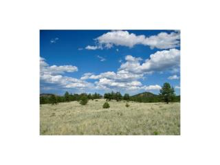 1668 Forest Ser Road #216, Lake George CO