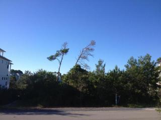 97 Morgans Trail, Santa Rosa Beach FL