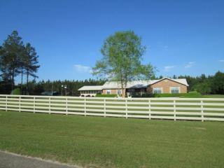 18192 Northeast Frank Williams Lane, Blountstown FL