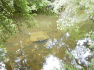 River Road, Crossville TN