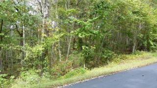 265 Elohi Way, Loudon TN