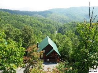 4473 Forest Vista Way, Pigeon Forge TN