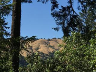 37 Conifer Way, Woodacre CA