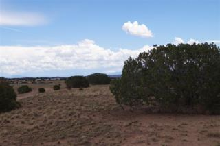 3 Lots Cactus Indian Ridge Boulevard, Medanales NM