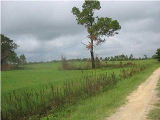 143 Causey Road, Doerun GA