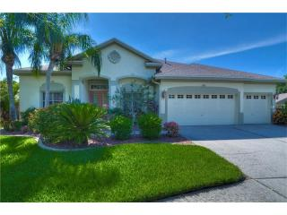 10318 Millport Drive, Tampa FL