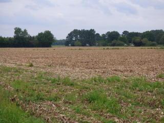 TR-2 Giddeons Pond Road, Willard NC