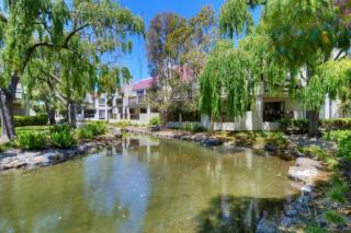 538 Shorebird Circle #22203, Redwood City CA