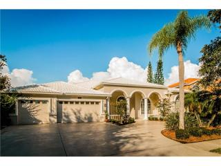 2115 Diamond Ct, Oldsmar, FL