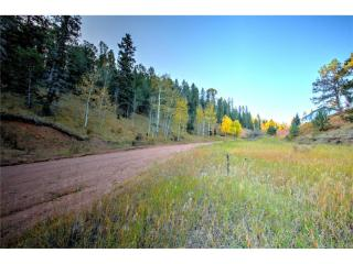 493 Willow Road, Divide CO