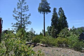 40798 Sunset Vista, Shaver Lake CA
