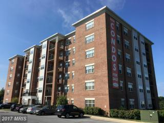 900 Red Brook Boulevard #304, Owings Mills MD