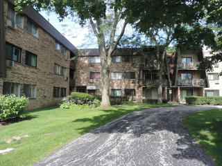 2604 North Windsor Drive #302, Arlington Heights IL