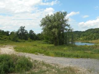 Lot 7 Factors Walk, West Bloomfield, NY
