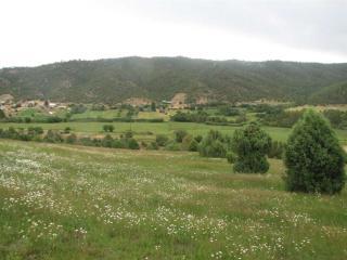 County Road C-002, El Valle NM