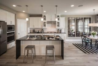 Plan 208 in Rocky Creek, Austin, TX