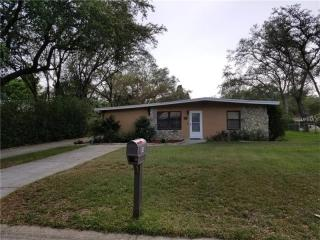 914 Dixie Maid Lane, Valrico FL