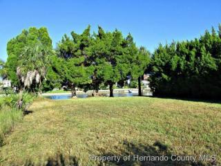 3373 Holly Springs Drive, Hernando Beach FL