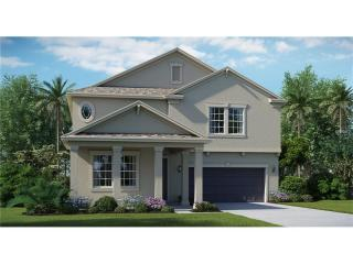 4135 Mount Bandon Dr, Land O' Lakes, FL