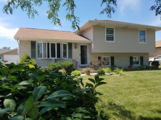 2915 Art Schultz Drive, Plainfield IL