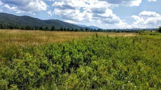 Camino De Arriba Del Llano, El Valle NM