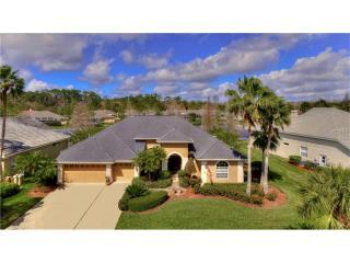 10559 Greencrest Drive, Tampa FL