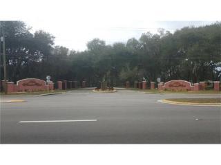 3927 Shady Meadow Drive, Plant City FL