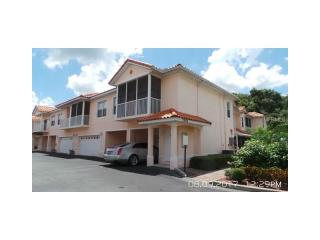 21008 Sunpoint Way, Lutz, FL