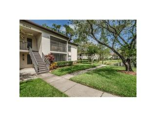 3301 Crystal Court, Palm Harbor FL