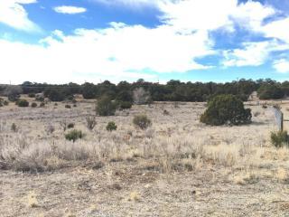 Wildlife Court, Edgewood NM