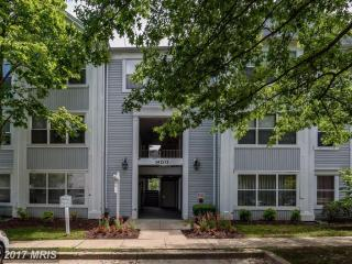 14203 Woolen Oak Court #4-31, Silver Spring MD