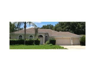 4705 Water Lark Way, Valrico, FL