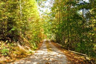 Lot 2 Carrs Creek Rd, Townsend, TN