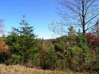 9 Walnut Hills Drive, Mineral Bluff GA