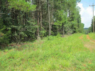 5.1 Acres Horns Creek Rd, Old Fort, TN