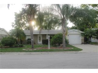 7843 Raintree Drive, New Port Richey FL