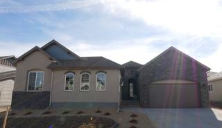 19692 W 95th Pl, Arvada, CO