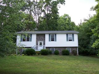 10793 Dickerson Mill Rd, Moneta, VA