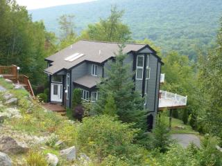 Cool Apartments For Rent In The Village Of Loon Mountain Lincoln Home Remodeling Inspirations Basidirectenergyitoicom