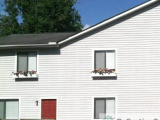 Apartments For Rent in Lake Ellen