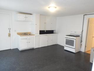Pet Friendly Apartments For Rent in New Auburn