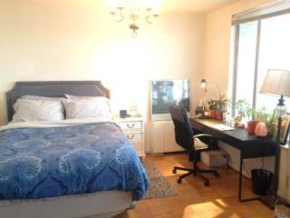Rooms For Rent In Arlington County Va 49 Rooms Trulia