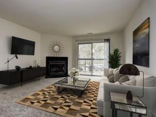 Apartment Communities For Rent In Columbia 36 Apartment