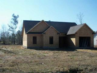 304 Big Tree Ln, Chinquapin, NC