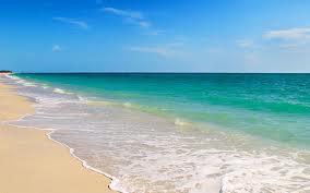 800 Highway, Mexico Beach FL